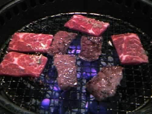 動物病院、美容室のHP制作はお任せください!@WEB制作CUBES-焼き肉