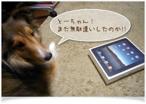 ホームページはプロWEBクリエイターにお任せください!WEB制作CUBES-iPad