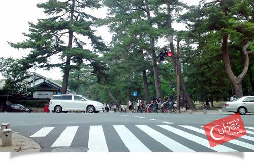 大阪の太っちょWebクリエイターCUBES-奈良公園