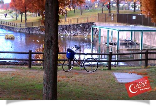 自転車とカラス